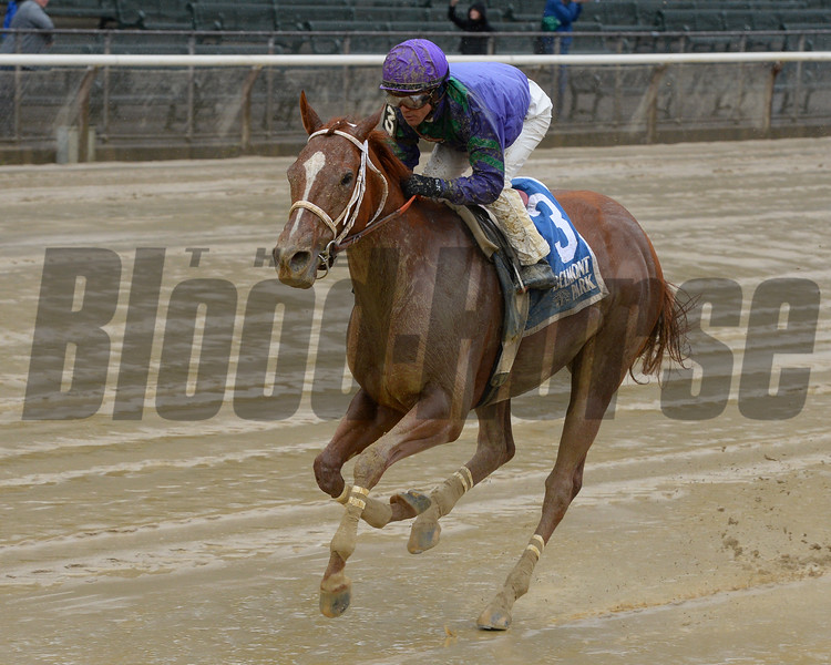 Quezon wins the 2016 Iroquois<br /> Coglianese Photos/Joe Labozzetta