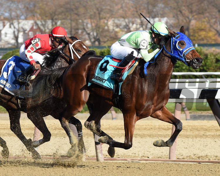 Gold for the King wins the 2016 Notebook Stakes<br /> Coglianese Photos/Chelsea Durand