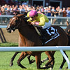 Fourstar Crook wins the 2016 Yaddo Stakes.<br /> Coglianese Photos/Chelsea Durand