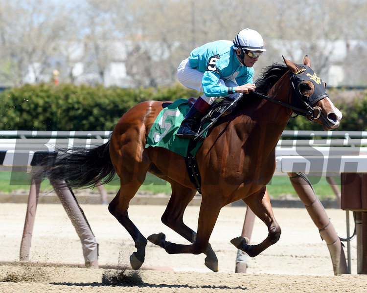 Lady Stardust Maiden Win, April 20, 2016<br /> First winner for Union Rags<br /> Coglianese Photos/Chelsea Durand