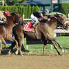 Shaman Ghost wins the 2016 Woodward<br /> Coglianese Photos