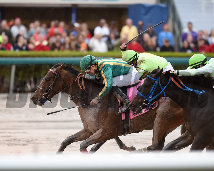 Party Boat wins the 2016 Wait a While Stakes<br /> Coglianese Photos/Andie Biancone