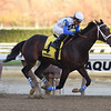 Sticksstatelydude wins the 2016 Discovery Stakes<br /> Coglianese Photos/Chelsea Durand