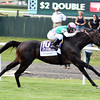 Flintshire with Javier Castellano wins the 2016 Woodford Reserve Manhattan (gr. I)       <br /> Dave Harmon Photo