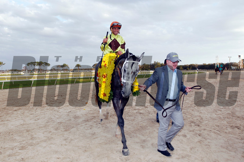Destin with Javier Castellano  up wins the Tampa Bay Derby for trainer Todd Pletcher and owner Randy Gullatt at Tampa Bay Downs