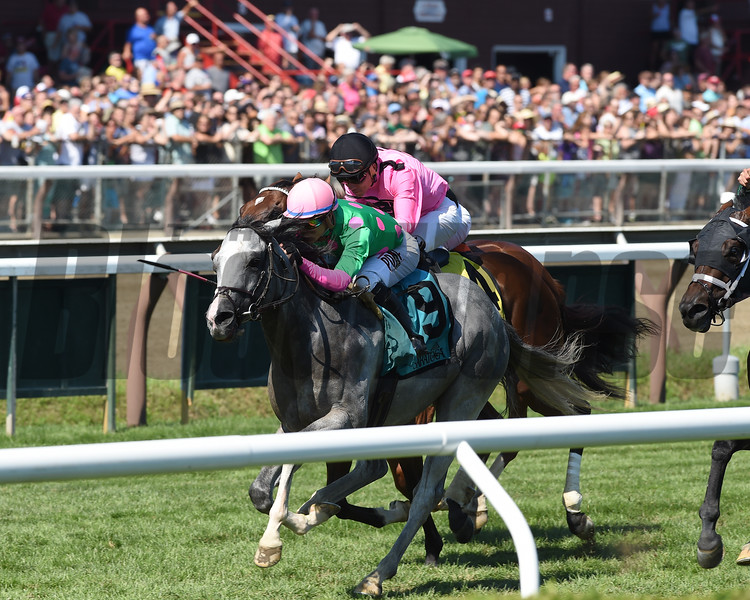 Disco Partner wins the 2016 Troy Stakes.<br /> Coglianese Photos/Cheslea Durand