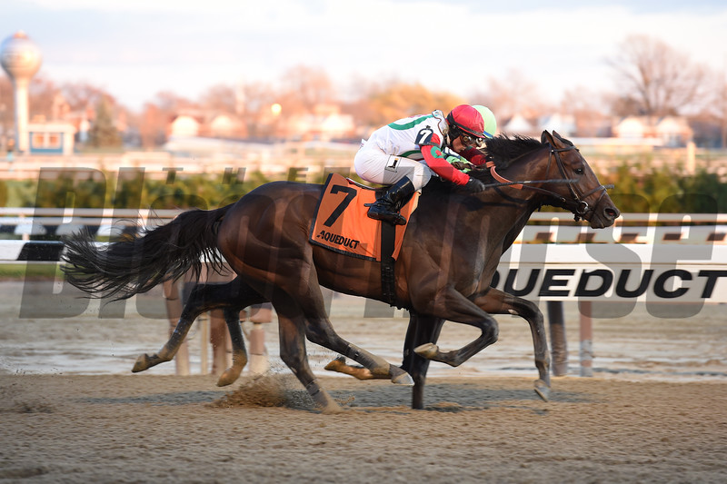Connect wins the 2016 Cigar Mile<br /> Coglianese Photos/Susie Raisher