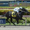 Dream of Me wins the 2016 Florida Sire Unbridled Stakes.<br /> Coglianese Photos/Leslie Martin