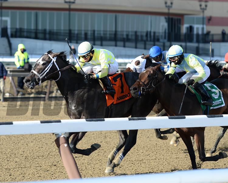 Sunny Ridge wins the 2016 Withers Stakes.<br /> Coglianese Photos/Joe Labozzetta