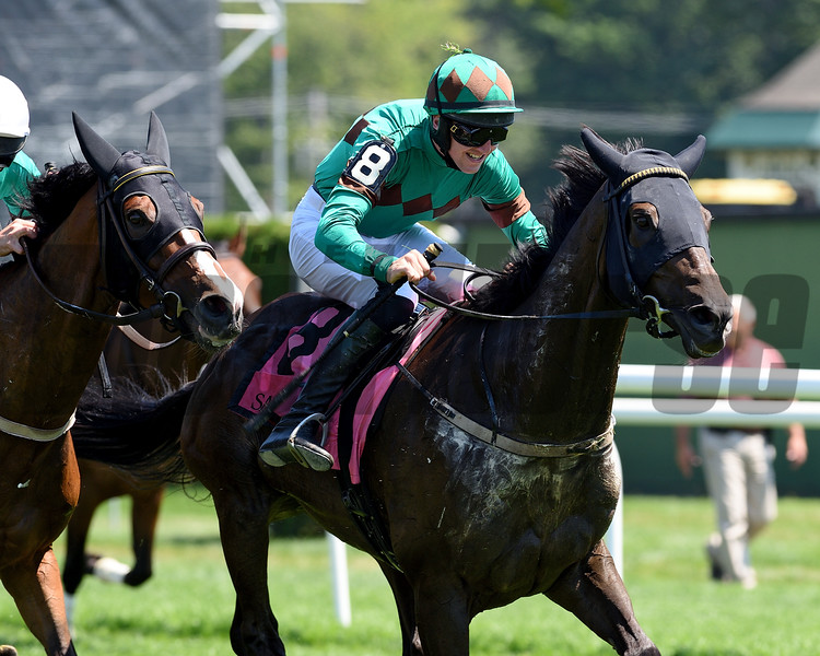 Bob Le Beau (IRE) wins the A. P. Smithwick Memorial Steeplechase S. (gr. I) at Saratoga<br /> Coglianese Photo/Chelsea Durand