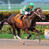 Three Rules wins the 2016 Florida Sire Series - Affirmed Division<br /> Coglianese Photos/Lauren King