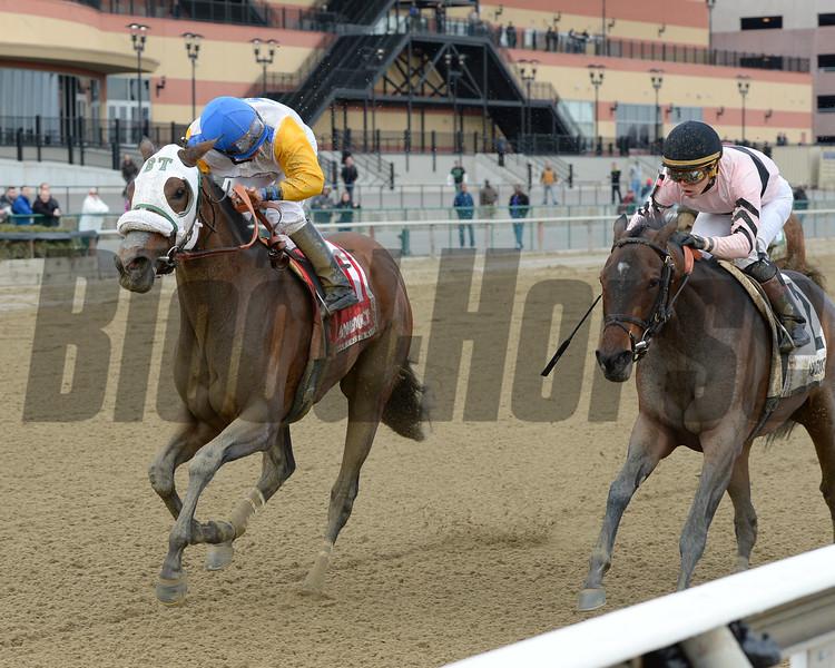 Verve's Tale wins the 2016 Comely Stakes<br /> Coglianese Photos/Joe Labozzetta