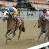 Verve's Tale wins the 2016 Comely Stakes<br /> Coglianese Photos/Joe Labozzetta