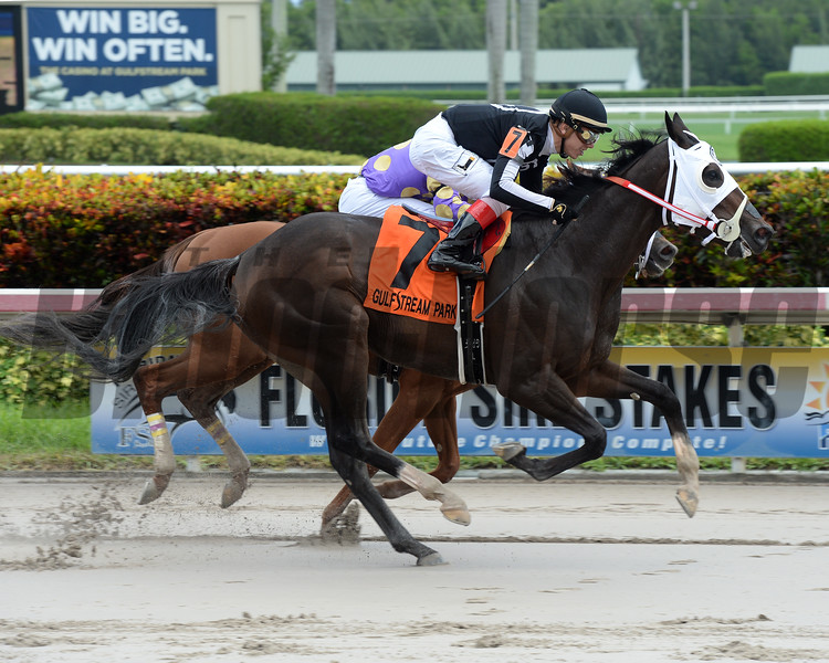 R Kinsley Doll wins the 2016 Florida Sire Series - Jewel Princess Division. <br /> Coglianese Photos/Leslie Martin