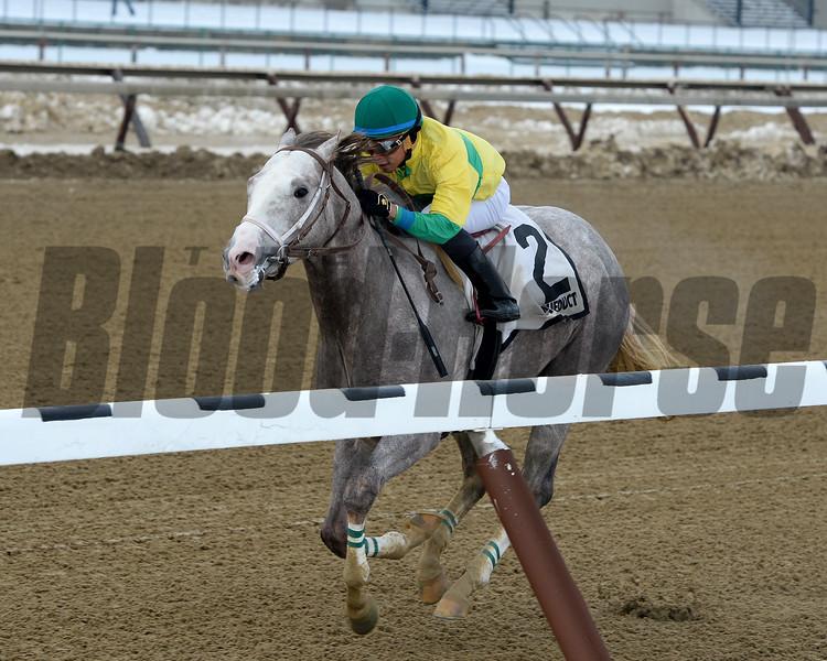 Bavaro wins the 2016 Great White Way Division of the New York Stallion Series Stakes<br /> Coglianese Photos/Joe Labozzetta