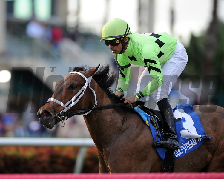 Cash Back wins the 2016 Melody of Colors Stakes.<br /> Coglianese Photos/Kenny Martin