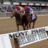 Practical Joke Champagne Belmont Park Chad B. Harmon