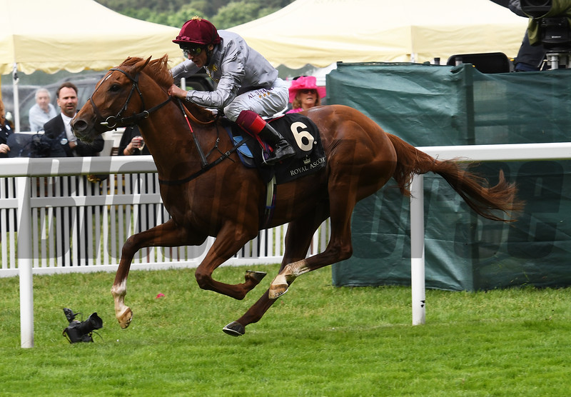 Galileo Gold, with Frankie Dettori, wins the St James's Palace Stakes June 14, 2016 at Royal Ascot.<br /> Mathea Kelley Photo
