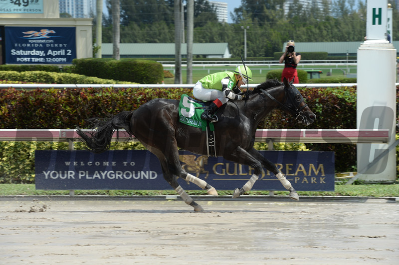 Valid wins the 2016 Skip Away Stakes.<br /> Coglianese Photos