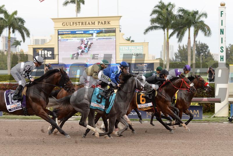 Nyquist wins the 2016 Florida Derby - Start<br /> Coglianese Photos/Leslie Martin