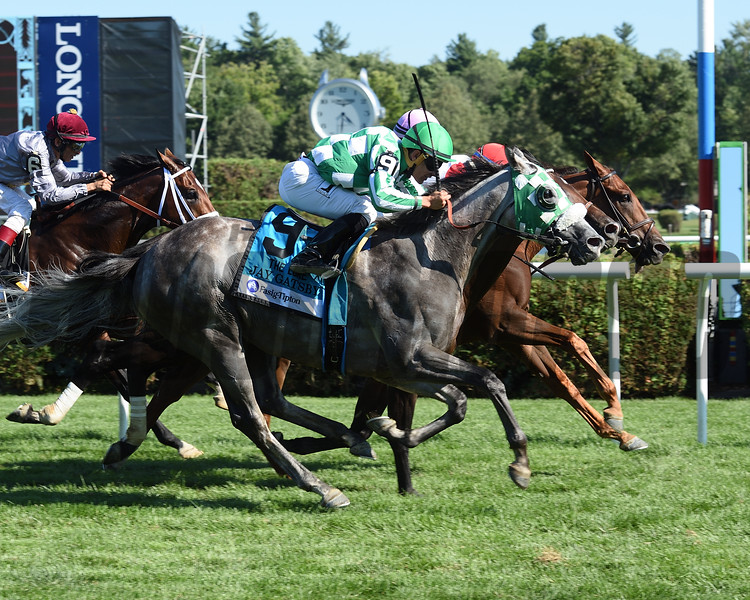 Shining Copper wins the 2016 Lure<br /> Coglianese Photos/Susie Raisher