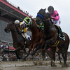 American Freedom wins the 19th running of THE LATIN AMERICAN RACING CHANNEL SIR BARTON STAKES AT Pimlico Race Course May 21, 2016 in Baltimore, MD.  Photo by Skip Dickstein