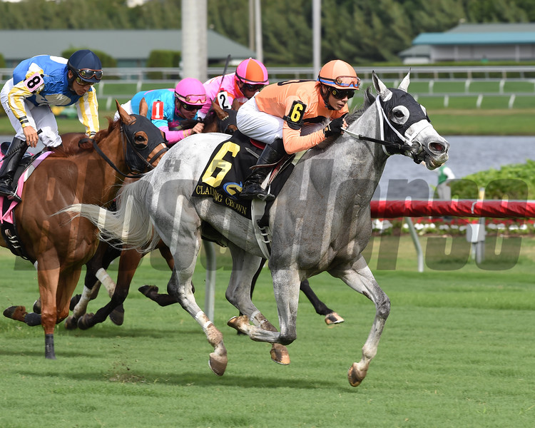 Spectacular Me wins the 2016 Claiming Crown Distaff Dash<br /> Coglianese Photos