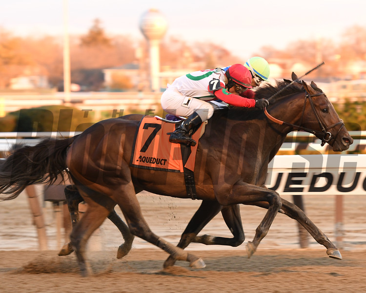 Connect wins the 2016 Cigar Mile<br /> Coglianese Photos/Annette Jasko