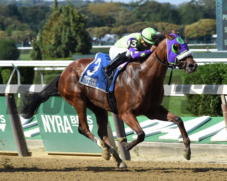 Arella Rockstar wins the 2016 Matron Stakes<br /> Coglianese Photos