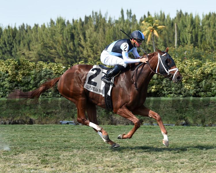 Squadron wins the 2016 Juvenile Turf Stakes<br /> Coglianese Photos
