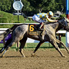 Sweet Loretta (#1) and Pretty City Dancer dead heat in the 2016 Spinaway Stakes.<br /> Coglianese Photos