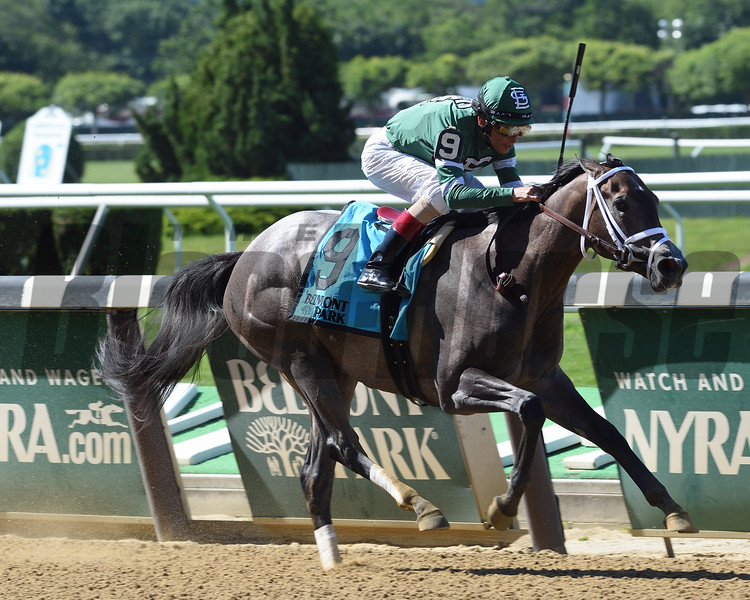 Bode's Dream wins the Astoria Stakes and Belmont Park June 9, 2016<br /> Coglianese Photos