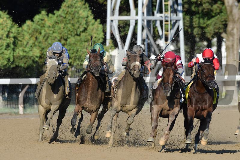Shaman Ghost wins the 2016 Woodward Stakes.<br /> Coglianese Photos/Arianna Spadoni