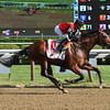 A. P. Indian wins the 2016 Forego Stakes.<br /> Coglianese Photos/Susie Raisher