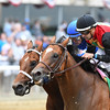 A. P. Indian wins the 2016 Belmont Sprint Championship<br /> Coglianese Photos