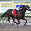 Neolithic - Allowance win, December 14, 2016<br /> Coglianese Photos/Lauren King