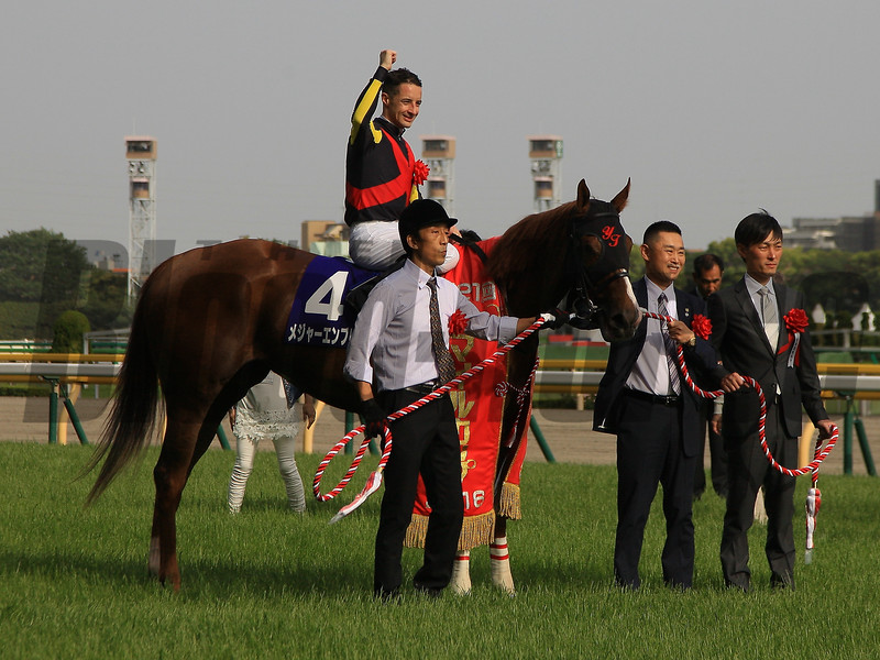 Major Emblem (JPN) wins the NHK Mile Cup in Japan May 8, 2016.<br /> Naoji Inada Photo