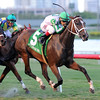 Pink Poppy wins the 2016 Wasted Tears<br /> Coglianese Photos/Lauren King