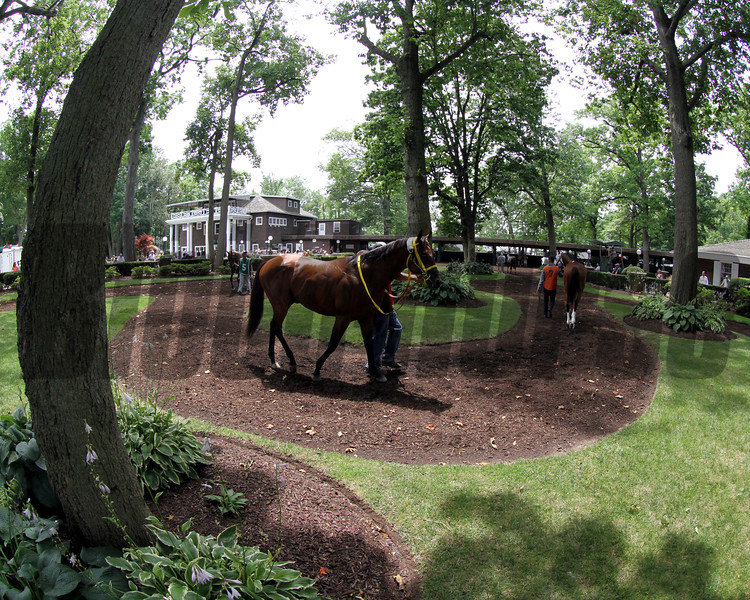 Delaware Park Paddock Chad B. Harmon