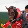 Duramente wins the 2016 Nakayama Kinen.<br /> Masakazu Takahashi