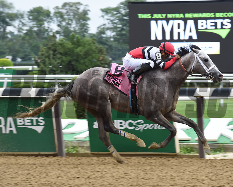 Fish Trappe Road wins the 2016 Dwyer.<br /> Coglianese Photos