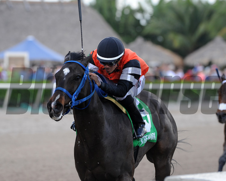 Lucy N Ethel wins the 2016 Old Hat Stakes.<br /> Coglianese Photos/Kenny Martin