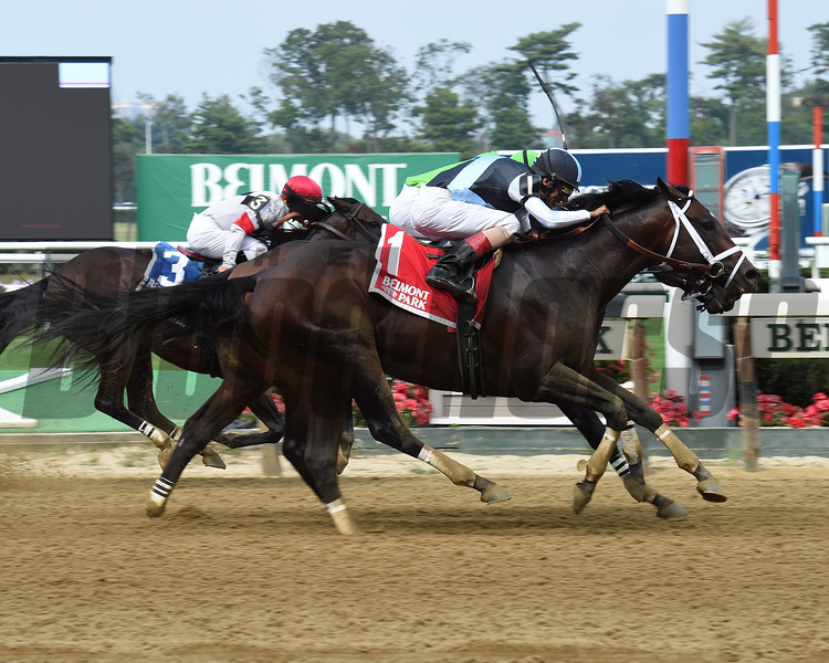 Comfort wins the 2016 Seattle Slew Stakes.<br /> Coglianese Photos