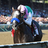 Arrogate wins the 2016 Travers.<br /> Coglianese Photos/Adam Mooshian