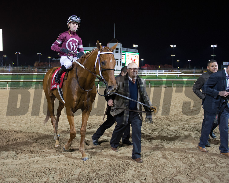 Caption: David Fiske with Winchell Thoroughbreds walks Gunner into wc.<br /> Gun Runner with Florent Geroux wins Clark Handicap (gr. I) on Nov. 25, 2016, at Churchill Downs.<br /> Anne M. Eberhardt Photo