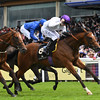 Prince of Lir wins the 2016 Norfolk Stakes at Royal Ascot, June 16, 2016.<br /> Mathea Kelley Photo