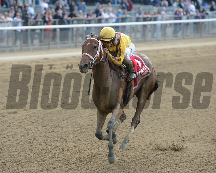 Cavorting wins the 2016 Ruffian Stakes. <br /> Coglianese Photos/Chelsea Durand