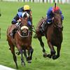 Jennies Jewel wins the Ascot Stakes at Royal Ascot June 14, 2016