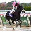 Old Harbor wins the 2016 Ticonderoga Stakes<br /> Coglianese Photos