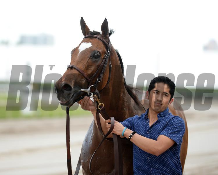 Heart to Heart wins the 2016 El Prado Stakes.<br /> Coglianese Photos/Lauren King